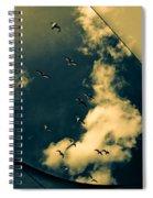 Canvas Seagulls Spiral Notebook
