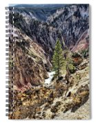 Canyon And Lower Falls Spiral Notebook