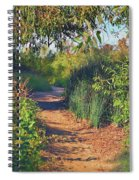 Canyon Path II Spiral Notebook