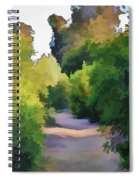 Canyon Path IIi Painterly Spiral Notebook