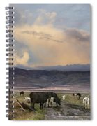 Canyon Road 2 Spiral Notebook