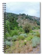 Canyon Road Spiral Notebook