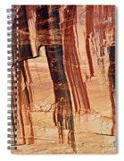 Canyon Textile Design Spiral Notebook