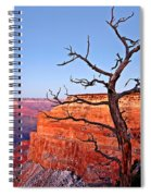 Canyon Tree Spiral Notebook