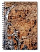 Canyon View Nevada Spiral Notebook