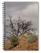 Capitol Reef 9553 Spiral Notebook