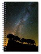 Caprock Canyon Bison Stars Spiral Notebook
