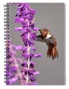 Captivated II Spiral Notebook