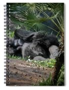 Captivity Is Heartbreaking Spiral Notebook