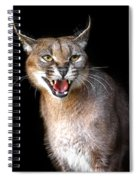 Caracal Hissy Fit Spiral Notebook