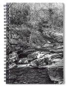 Caradocs Falls 2 Mono Spiral Notebook