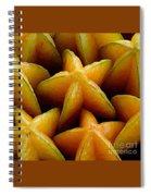 Carambola Spiral Notebook