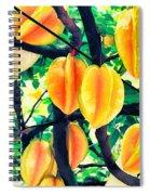 Carambolas Starfruits Spiral Notebook