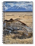 Carcass With A View Spiral Notebook