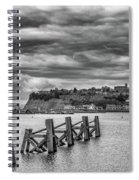 Cardiff Bay Dolphins Mono Spiral Notebook