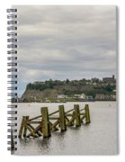 Cardiff Bay Dolphins Spiral Notebook