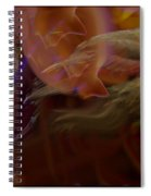 Cardinal And Abstract Spiral Notebook