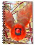 Cardinal In Flight Abstract Spiral Notebook
