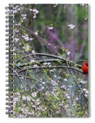 Cardinal In Flowering Tree Spiral Notebook