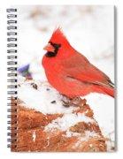 Cardinal In Snow Spiral Notebook