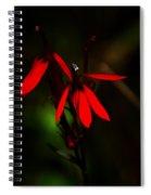 Cardinal  Plant Spiral Notebook
