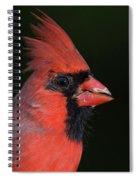 Cardinal Portrait Spiral Notebook
