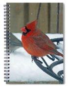 Cardinals Snow Day Spiral Notebook