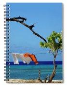 Caribbean Blues 3 Spiral Notebook
