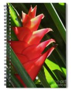 Caribbean Color Spiral Notebook