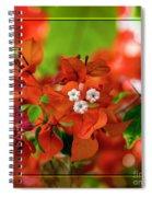 Caribbean Floral Surprise Spiral Notebook