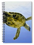 Caribbean Sea Turtle Spiral Notebook