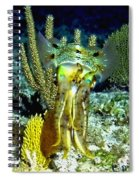 Caribbean Squid At Night - Alien Of The Deep Spiral Notebook
