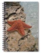 Caribbean Starfish Spiral Notebook