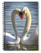 Caring Swans Spiral Notebook