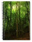 Carins Hill Co Sligo Ireland Spiral Notebook