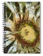 Carline Thistle Spiral Notebook