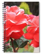 Carmel Mission Roses Spiral Notebook