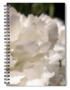 Carnation Blooms Spiral Notebook