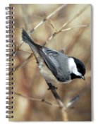Carolina Chickadee - Birds At Bisset Park Spiral Notebook