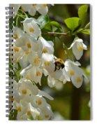 Carolina Silverbell And Bee Spiral Notebook