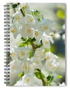 Carolina Silverbells In Spring Spiral Notebook