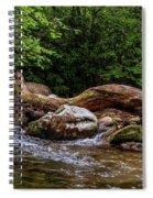 Carolina Stream Spiral Notebook