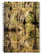 Carolina Swamp Spiral Notebook