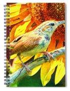 Sweet Carolina Wren Spiral Notebook