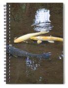 Carp Spiral Notebook