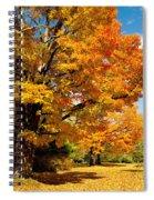 Carpet Of Leaves Spiral Notebook
