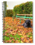 Carpet Of Leaves Spiral Notebook