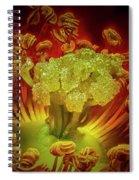 Carpet Rose Center Spiral Notebook