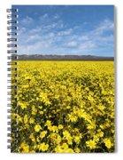 Carrizo Plain Desert Sunflower Field Afternoon Spiral Notebook