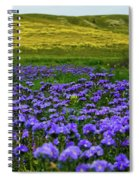 Carrizo Plain Wildflowers Spiral Notebook
